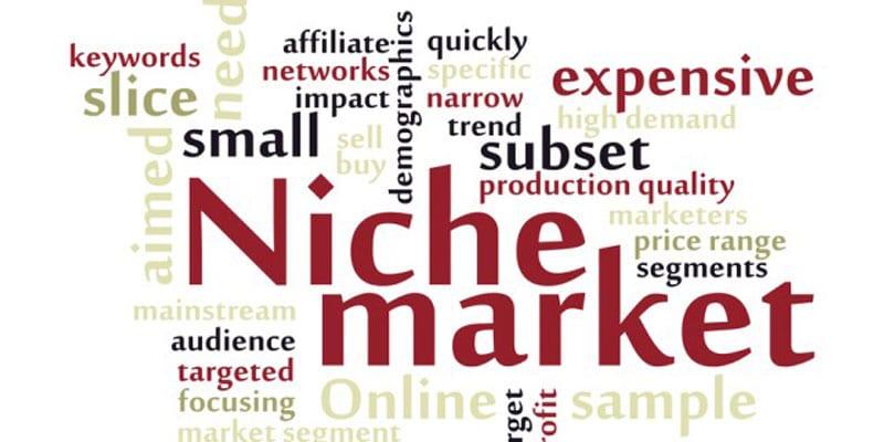 select-the-right-niche